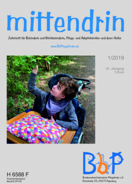 """Titelblatt 1/2019 der Zeitschrift """"mittendrin"""""""